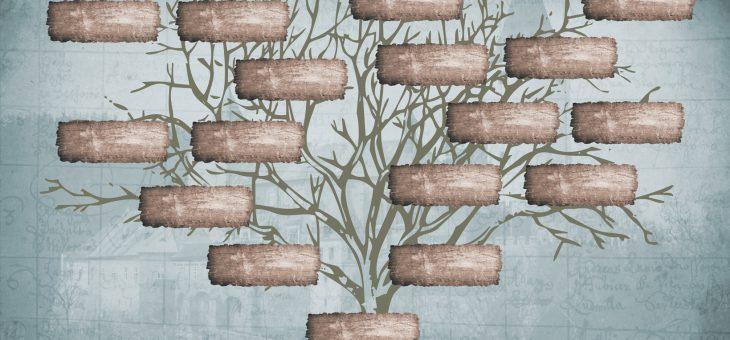 DNA RELATIVE PROFILE: MEET THERESA!